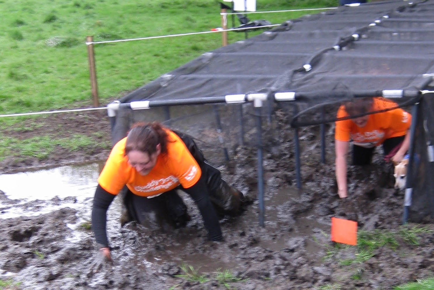 What it's like at the Battersea Muddy Dog challenge