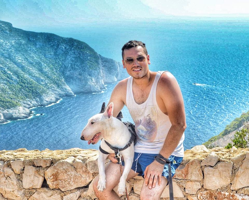 Rocky the Bull Terrier travels all over the world.