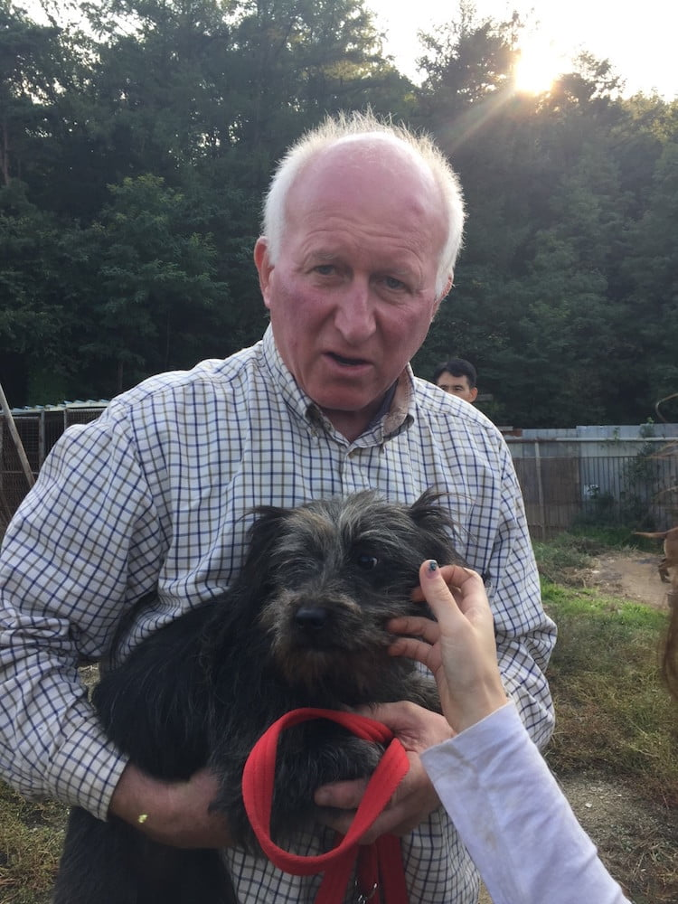 Shadow with Humane Society International campaigner Dr Roger Mugford.