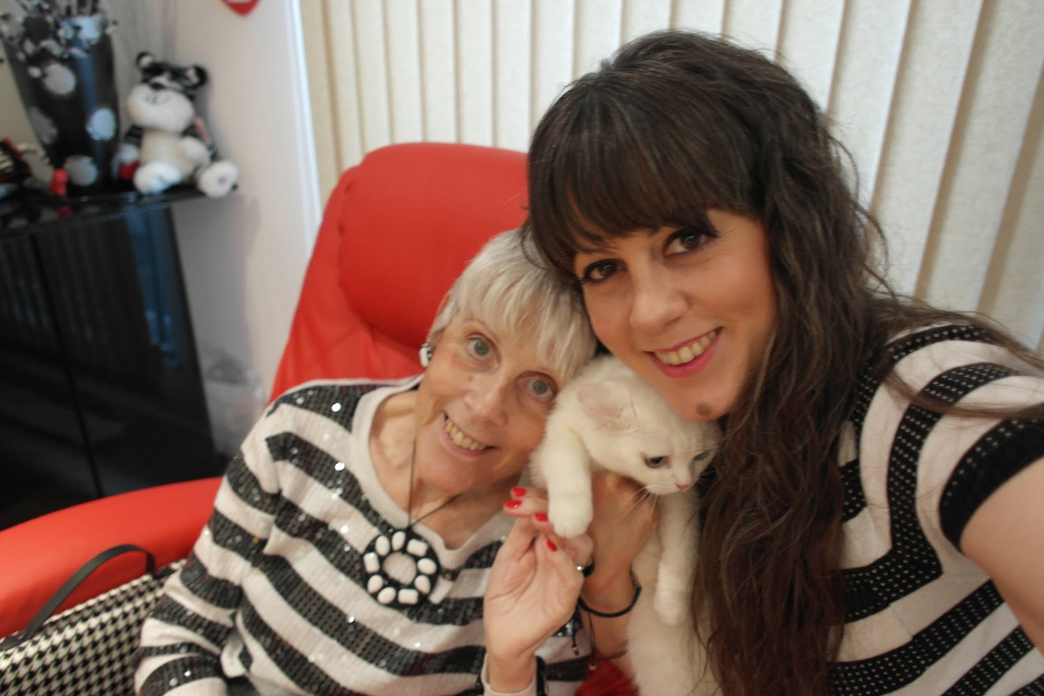 Starina the Emotional Support cat with Sazsa and her mum Simmi.
