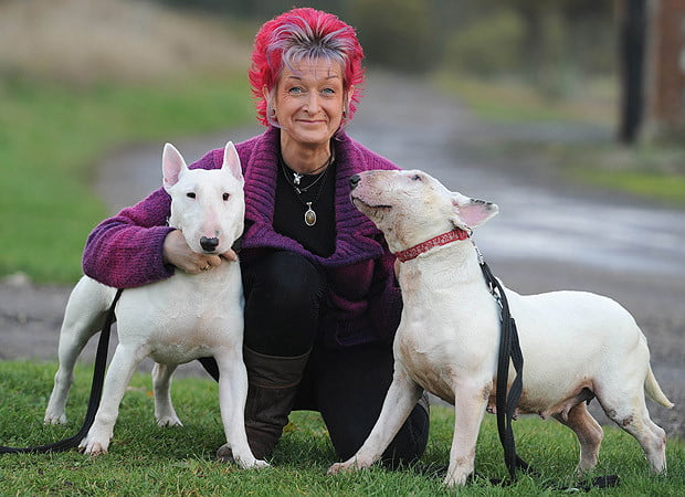 Liz Haslam with bait dogs Della and Dotty. She needs help finding a new home to house her 16 rescue dogs.