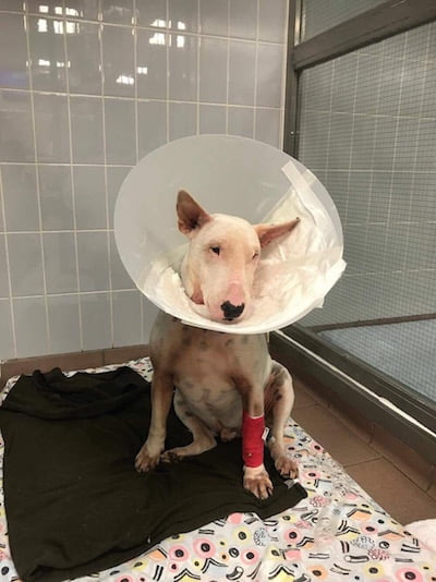 Eric who is recovering from surgery after having part of his jaw removed.