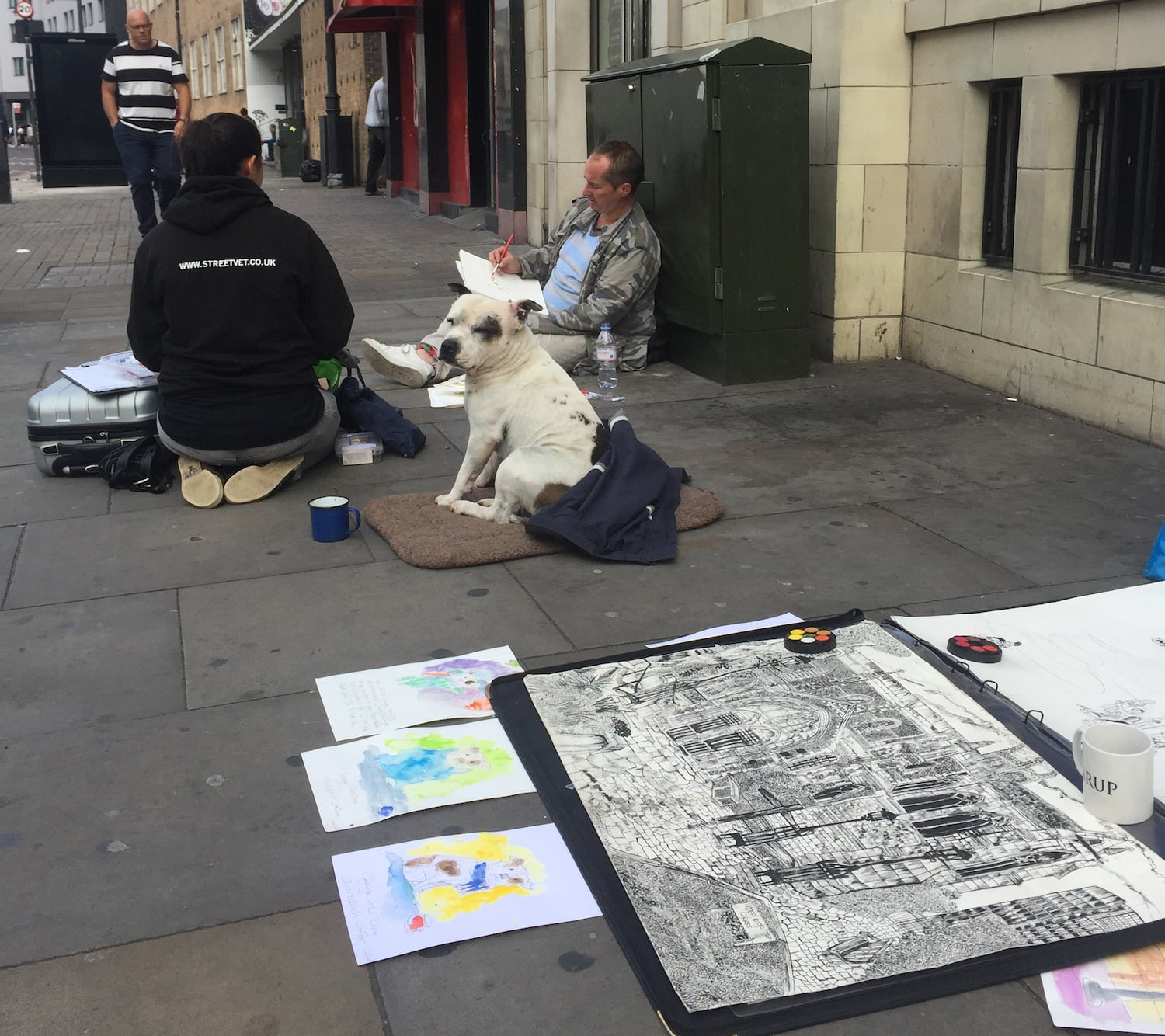 Can you help a homeless dog this Christmas through the StreetVet showbox appeal?