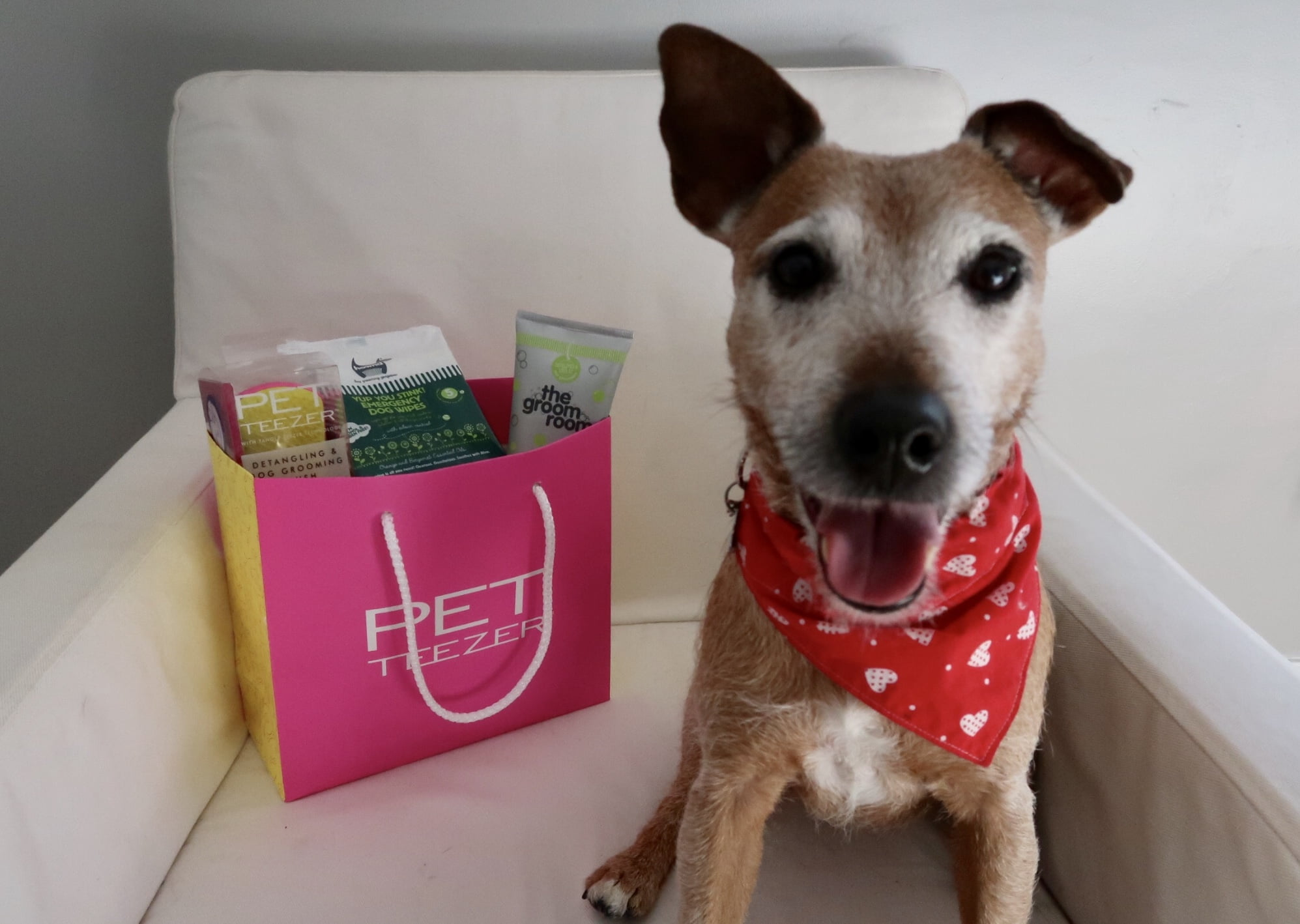 Shaun Pulfrey, creator of the Tangle Teezer has created a Pet Teezer for dogs!