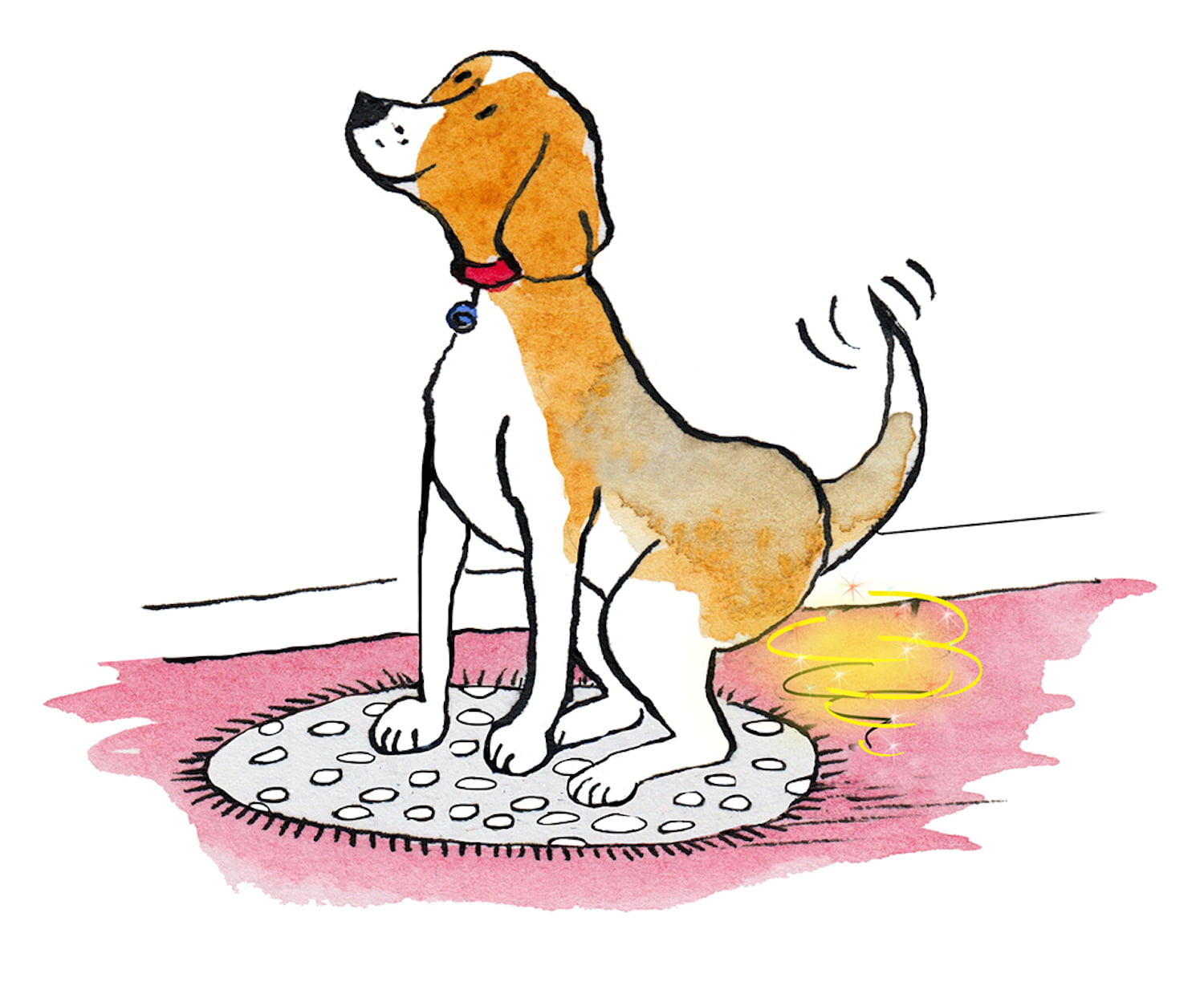 Theresa Smith on the mindfulness lessons we can learn from our dogs!