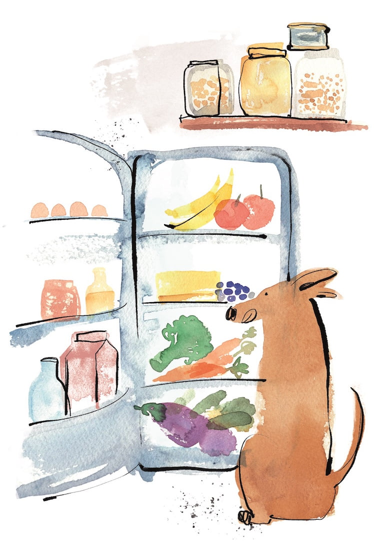 Debora Robertson shares what to keep in your pup pantry in her cookbook for dogs.