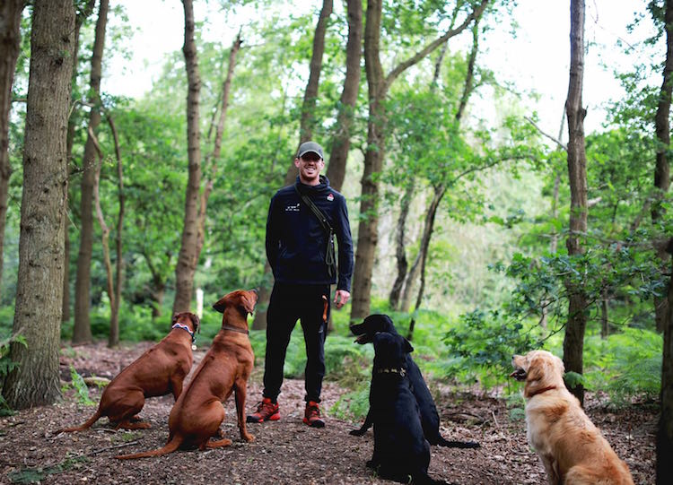 Milo Royds of Milo's Dog Running shares how his love of running and dogs led to his dream job!