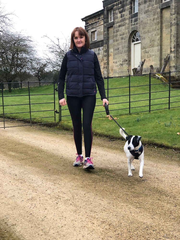 Dog friendly things to do and places to visit in Morpeth, Northumberland.