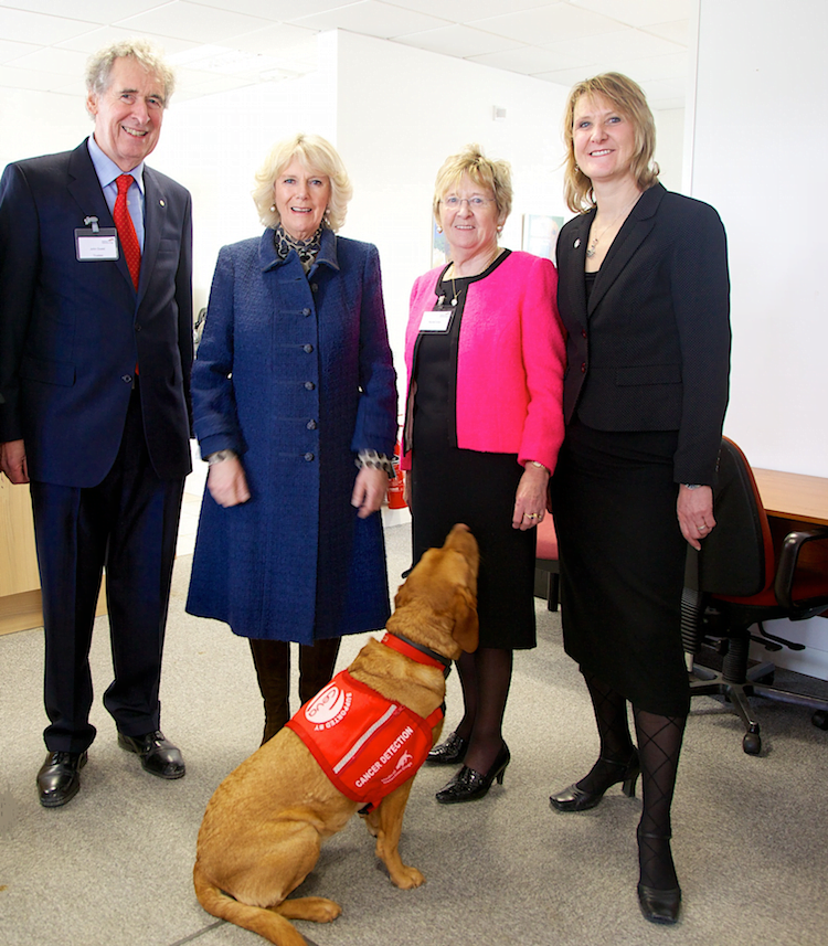 Claire Guest from Medical Detection Dogs on their work with Parkinson's patients