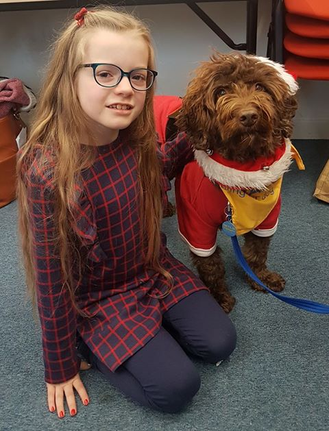 Pets as Therapy dog Rolo