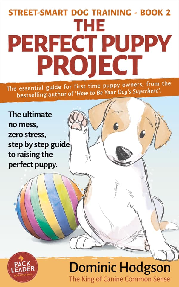 Dominic Hodgson talks about his book the Perfect Puppy Project