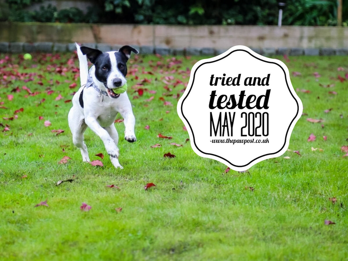 Pet friendly products we've tried and tested in May