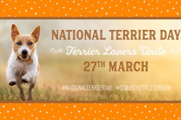 National Terrier Day March 27th
